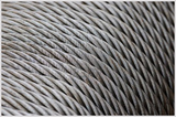 Steel wire for cables